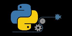 Python'da IP Adresi Nasıl Doğrulanır?
