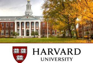 """Harvard Üniversitesi Ücretsiz Türkçe """"Bilgisayar Bilimlerine Giriş"""" CS50x Kursu"""